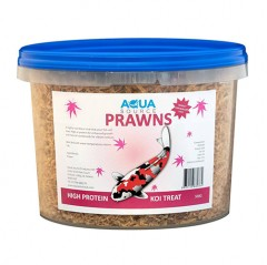 aqua source prawns