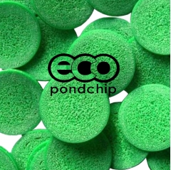 eco pond-chip
